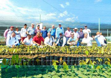 Proyectos cafeteros beneficiará a 40 familias en el Meta
