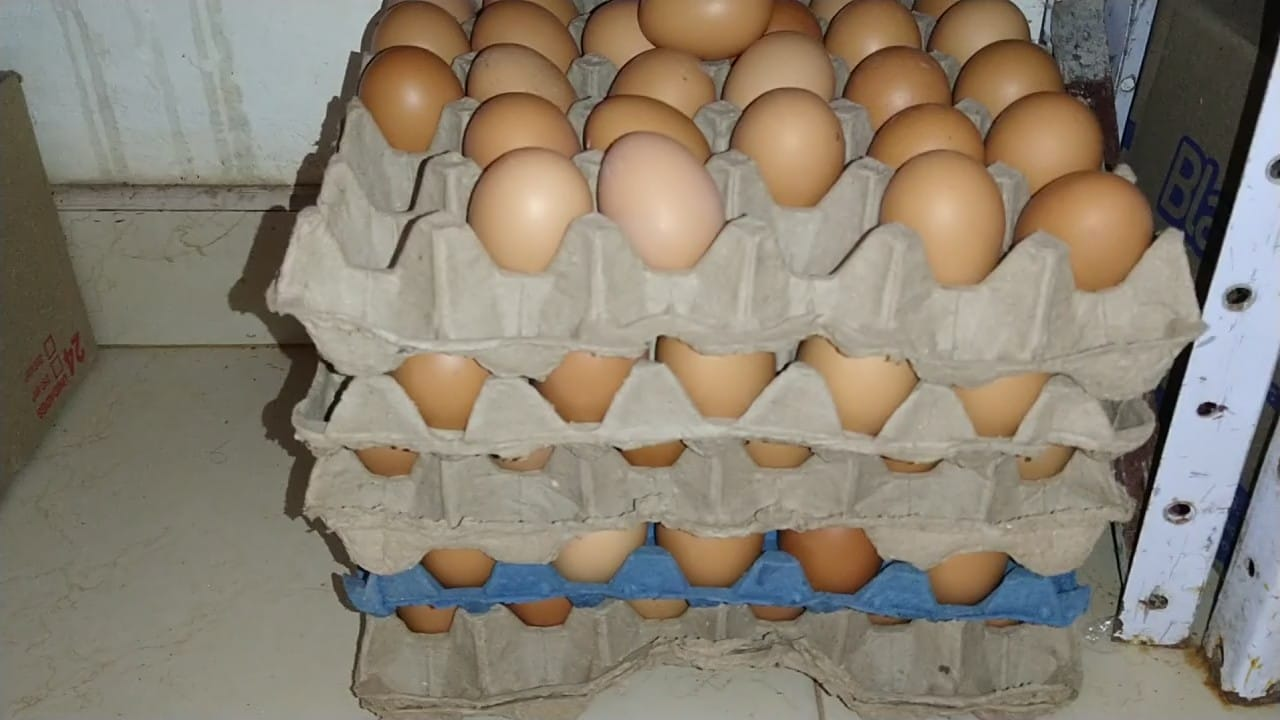 ¿Subió el precio de la panela, azúcar y huevos?